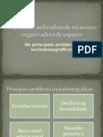 Principais Problemas Sociodemograficos_certo