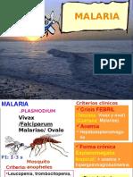 Malaria - ppt