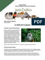 FAUNA EXOTICA - Dieta de la Iguana Verde