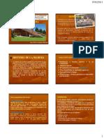 20110-13_MADERAS_WH (1).pdf