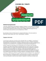 Taxonomía Del Tomate