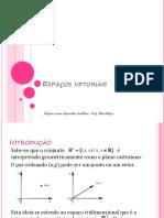 Espaços-Vetoriais.pdf