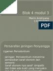 Blok 4 modul 3