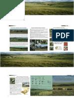 Rede Campos Sulinos Folder