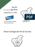 Anatomia y Fisiología TGI DIPCMI 2013