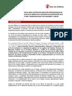 TdR Asesores Territoriales Convenio ICBF