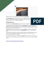 informacion de Geomembrana.docx