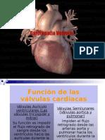 Valvulopatias cardiacas SISTEMICA