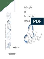 Antología de Psicoterapia Familiar