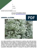 Assenzio - Storia e Verità.pdf