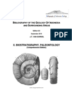 BIG_X_Paleontology.pdf