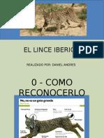 EL LINCE IBERICO.pptx