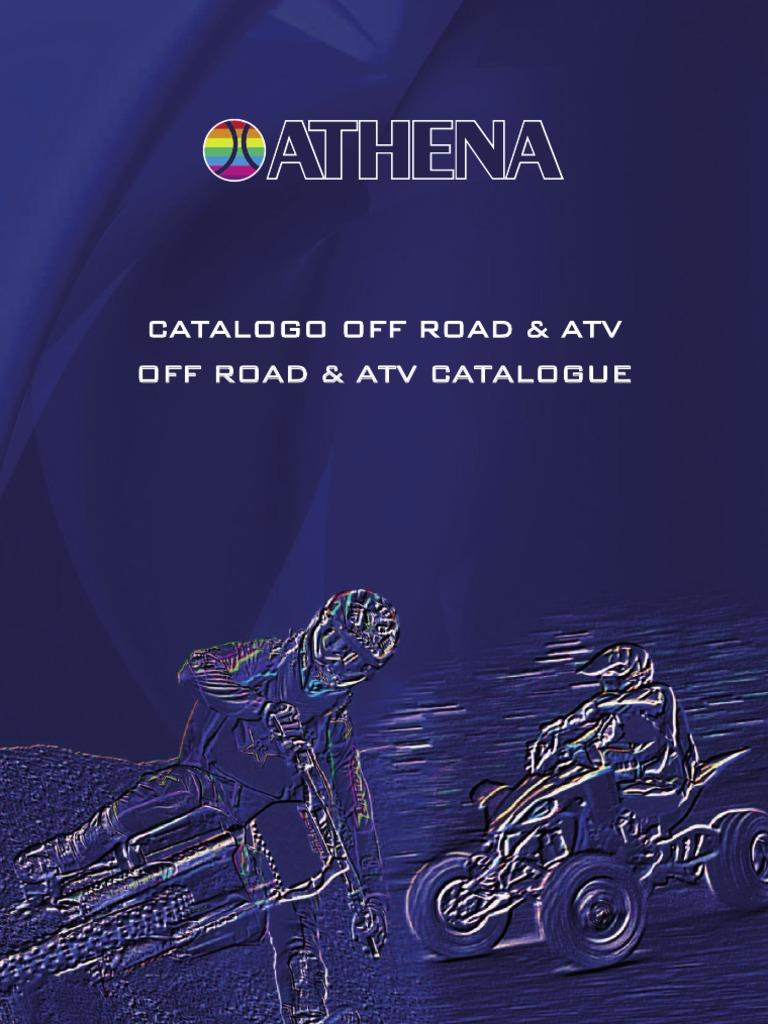 Athena P400270850305 Dichtungssatz Motor