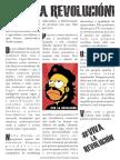 Zine Viva La Revolucion 2011