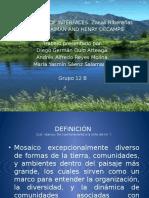 Ecologia_zonas_ribereñas.pptx