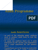 AuditProgramme.ppt