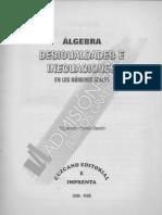 Desigualdad E Inecuaciones Alejandro Flores