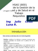 OHSAS 18001 Gestion Seguridad y Salud Ocupacionall