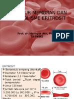 Struktur Membran Dan Metabolisme Eritrosit OK