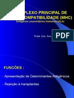 Aula - Imunologia - MHC
