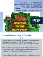 Hutan Hujan Tropika
