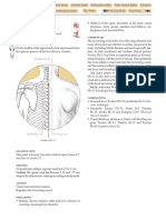 DU-13.pdf