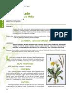 Dialnet-Fisioterapia-202438.pdf