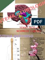 EXPOCICIONsistema Nervioso