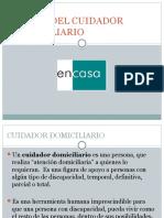 Perfil Del Cuidador Domiciliario