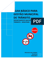 Gestao Municipal Do Transito