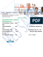 PERFIL LIPIDICO.doc