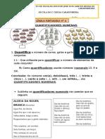 Quantificadores e Adjetivos Numerais