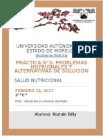 Roman Billy_ Practica 3_nutrición