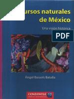 RecursosNaturalesDeMexico-Bassols Batalla.pdf