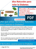 remediosnaturalesparacontrolarladiabetes-141120181533-conversion-gate01.pdf