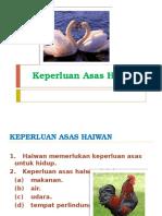keperluan asas haiwan tahun 2.pptx