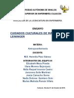Ensayo de Los Cuidados Culturales Leininger 1 (1) (1)