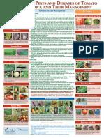 tomato_Deseases.pdf