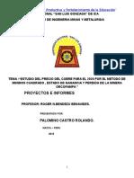 Trabajo de Proyectos 2015 ROLANDO