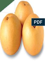 Asia Pear