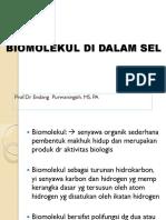 1.1 Biomolekul Sel.
