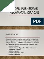 Profil Puskesmas Kecamatan Ciracas