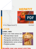 Persentasi Hepatitis
