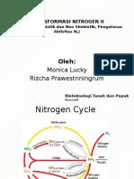 Transformasi Nitrogen II