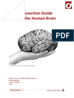 Dissection Guide Neuroanatomy 2015 TvR