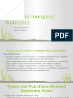 Unit 4 Plant and Inorganic Nutrients