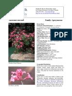 Dessert_Rose_Adenium_obesum.pdf
