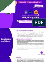 Programa de especialización virtual