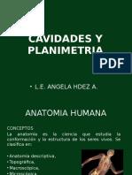 Cavidades y Planimetria