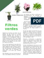 Plantas de interior.docx
